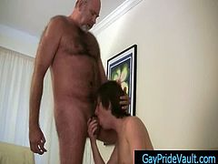Old gay bear getting his dick sucked by twink gaypridevault gay sex