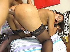 Spoiled Latin shemale hops on stiff dick with her ruined asshole in cowgirl and later in reverse cowgirl styles before she gets pounded in doggy pose.