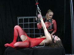 Ashley and Kathia Nobili wearing fishnets are having some good time together. They caress each other and then play with gags and strap ons.
