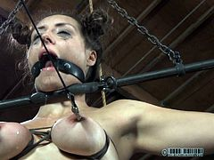 Miss Dee inflicts the cruelest pain on her sex slave. The slave is tied has her tits wrapped so they nearly burst. Circulation is cut off and the goddess takes pokers to them and inflicts even more pain.