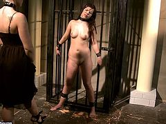 Dark-haired lesbian Ginna has some fun with salacious chick Kathia Nobili. Kathia puts clothes pegs on Ginna's body and then slams her snatch with a dildo.