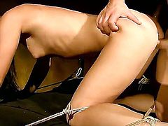 Honey Demon gets tied up and nailed hard in her ass