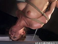 Watch as this tied up and suspended Asian slut get some kind of rough and nasty pussy pleasuring from the hands of these rude guy who pleasure her holes with several toy cocks and vibrators.