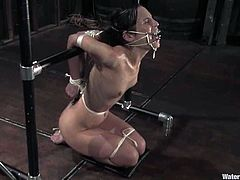 Sexy brown-haired chick gets her vagina toyed. After that the guy puts her head in water. Of course she is tied up and gagged.