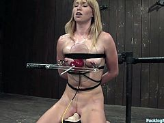 Feeling kinky and looking for a BDSM scene? Then this clip is just for you. Watch this mind-blowing hot girl's experience with the machines that won't let you down!