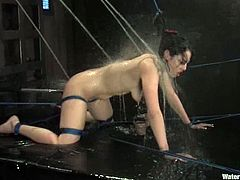 Naughty Asian girl gets tied up and then toyed by her Master. Later on she also gets humiliated in an aquarium.