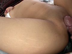 Hot brunette Asian whore with a nice set of small tits shows her love for fucking. She gets her hairy pussy fucked hard in missionary position.