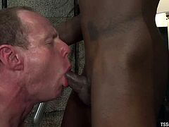 Insatiable black shemale Bambi Prescott is having fun with a guy called Big Red. The tranny tortures the dude and then destroys his butt with her BBC.
