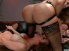 Three hot chicks in sexy lingerie shake their nice asses and then toy their asses with big dildos. Later on they also fist and fuck each other with a strap-on.