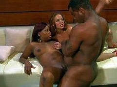 Long haired ebony with big juicy hooters and huge jaw dropping ass and her arousing blonde babe give mind blowing blowjob session with wet titjobs to black hunk with stiff sausage