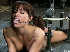 There's going to be anal toying and more kinky action for Gia Dimarco in this BDSM video where the bondage is taken to another level.