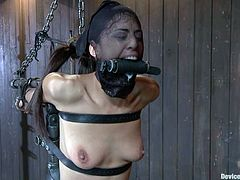 Sexy brunette Lyla Storm gets tied up and chained all over. The dominator spanks Lyla and then pokes his fingers deep into her snatch.