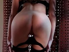 Pornstar Emily Addison strip dance from lingerie