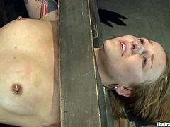 Blonde chick gets tied up and toyed in her tight ass. After that she gets fucked hard in both holes by the Master.