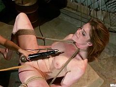 Lovely redhead babe gets toyed and fisted in femdom video
