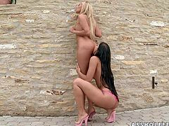 Lesbian dolls Donna Bell and Angel Pink pose topless in the backyard and then take off their bikini thongs to lick each others perfect perky asses. Then blonde and brunette play outdoors.