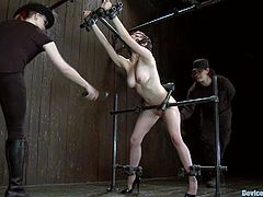 kinky Iona Grace gets chained. After that guys toy her pussy with big stick. She also gets her tits covered with big clothespins.
