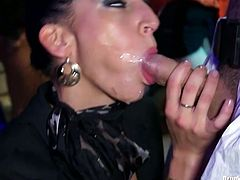 Hot tempered sluts are here and they are ready for a really hardcore sex fun. One stands on her kneees and sucks dick alike greedy for cum. Anothe rone slurps dong nearby. Enjoy hot Tainster porn tube video.