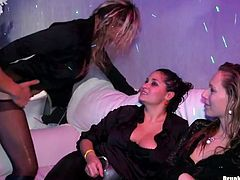 Two aroused lesbians pet each other's steamy bodies, while another hussy welcomes a hard fuck in doggy pose through a hole in pantyhose in sizzling hot group sex video by Tainster.