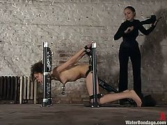 Cute mulatto Jamie is having fun in a basement. She gets bound and humiliated and then loves having a massive dildo in her cunt.