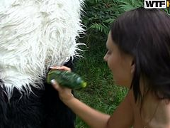 Slutty teen gets nailed by panda bear in outdoor porn session
