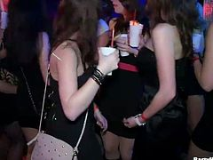 Tainster sex clip will show you when horny gals get drunk. Some chicks are kissing and the others are stripping. Kinky slim sluts with sweet tits desire to seduce some men, cuz their wet pussies haven't been polished for a while.