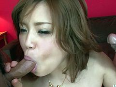 Jaw dropping Japanese babe in ripped fishnet stockings stands in doggy pose while getting her pussy pounded from behind before she stands on her knees in front of two aroused wankers for double oral fuck in sizzling hot threesome sex video by All Porn Sites Pass.