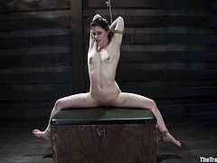 Captivating brunette Katherine Cane allows some guy bind her in a basement. The man tortures the hottie and then fucks her nice pussy with a dildo.