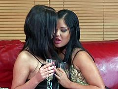 Babes Angelica Heart and Antonya have fun