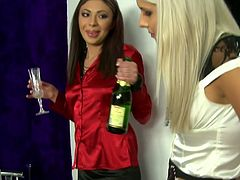 Gorgeous babes looking classy and fierce drink champagne celebrating promotion at work. They start kissing passionate on a bed pleasing one another.