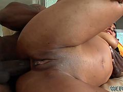 Bitchie black slut can boast of huge nice rounded butt. This harlot is a true fan of anal fuck. Changing positions kinky nympho desires to get her asshole polished properly and screams of delight like a mad one. Dude, just don't pass by this incredibly hot WCP Club sex clip and be sure to jizz in a flash.