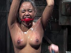Check this bondage video where these two kinky ladies torture one another under water as you watch them in action.