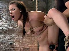 Casey is one of those classic, natural beauty with a sex appeal not many guys can handle. Because she's so fucking hot we decided to tie her up and play with that sweet pussy of hers. The executor made sure she's tied in a very uncomfortable position and then began rubbing her cunt with a vibrator