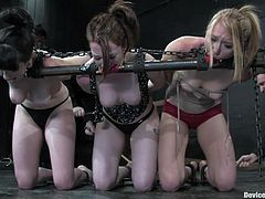 Three gorgeous sluts give themselves up to be victims of a sadist and bondage devices in this video right here, check it out!