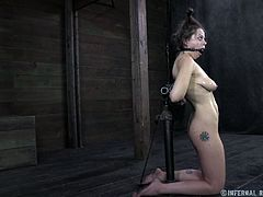 Pretty Nadia is down on her knees this time. She was a naughty whore and made men horny so Nadia is now receiving what she deserves. The executor shows her no mercy and starts with those hot oiled boobs. He tortures her tits with suckers and keeps her pretty mouth ball gagged. Wanna see what else he will do to her?