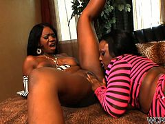 Welcome to enjoy incredibly hot WCP Club sex clip. Zealous ebony chicks in bright stockings are on the small couch. Booty and curvy nymphos are real pros in eating, spooning and tickling each other's wet juicy cunts for orgasm. Gosh, these lesbos with nice boobs are just dick hardening.