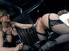Kiki Daire and Nina Hartley are fucking in BDSM style