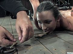 A kinky submissive chick gets pinned down to the ground by bondage machine and fucked by a fucking machine. It's pretty hot!