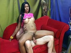 Indian bushbitch gives steamy blowjob before she gives a reverse cowgirl style to aroused white tourist in steamy sex video by Indian Sex Lounge.