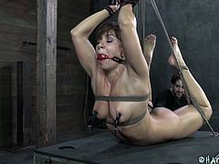 Lea is all tied up and almost hanging there as her executor does his job. Her mouth is ball gagged so she won't scream with pleasure and pain. The guy rubs her pussy with a sex toy and then uses metal clamps to on her nipples to induce pain. Yeah the whore likes it that way and she deserves more punishment