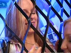 Nothing can stop horny lesbian girls. They touch and rub each other through the fence. Check out their natural big knockers too!