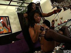 WCP Club sex clip presents two voracious black lesbians. Being alone at home bitchie chicks with flossy asses and sweet boobs desire to gain some delight. How? Wondrous booty and busty brunettes are great pros in tickling and licking wet cunts. Besides zealous gals have a dildo to help them reach orgasm.