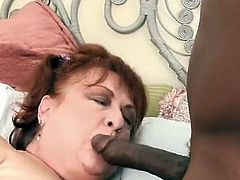 Grandma acquires cunt impaled by big black cock