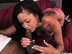 Jayla Starr and hard cocked dude enjoy interracial sex too much to stop