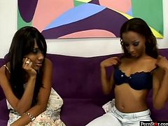 Pornstar sex clip has prepared something special for true fans of kinky black lesbians. Bitchie brunettes with droopy tits get rid of white dresses and move to the couch, cuz it's high time to tickle, lick and spoon each other's wet cunts for orgasm.