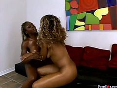Black ladies are already naked. Horn-mad chicks with big rounded asses cover each other with oil. Kinky black like coal gals play with huge boobs and bend over to tickle ebony quims for pleasure.