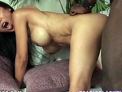 See how Tia Ling gets her pussy destroyed by a massive black penis and lower the volume of your speakers because she's gonna scream with pain and pleasure.