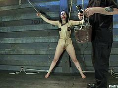 Kinky bitch gets tied up and humiliated as she deserve it. She also gets her pussy stuffed with big dildo.