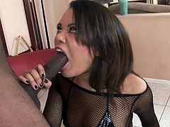 See a vicious Asian temptress devouring a big black cock before her tight ass gets drilled balls deep into a massive anal orgasm.