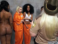 Well, this WCP Club sex clip will surely make you jizz. Ugly white cop watches the way slim black prisoners with sweet tits kiss passionately and rub each other's clits right in the prison cells. Gosh, I've already jizzed seeing these awesome horny nymphos in orange prison suits.